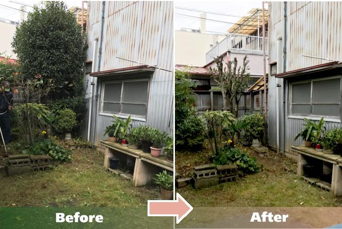 Ecoグリーンでは埼玉県草加市、川口市、さいたま市、および周辺エリアで庭木の剪定作業のご依頼をお受けしております。
